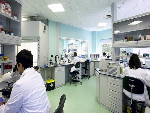 Офтальмологический институт Фернандес-Вега
